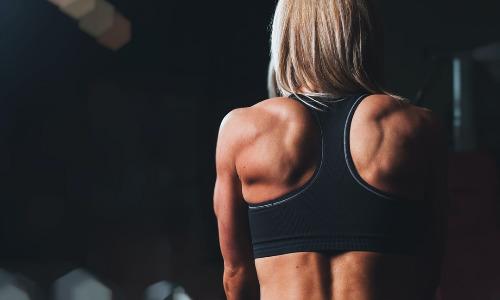 Все о мышечной и жировой ткани при хроническом слабом воспалении